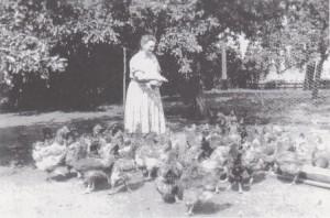 Oma van de kippen