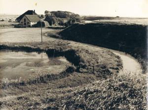 Krijgsman-1954